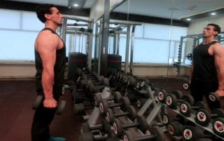 Alternate Standing Hammer Curl