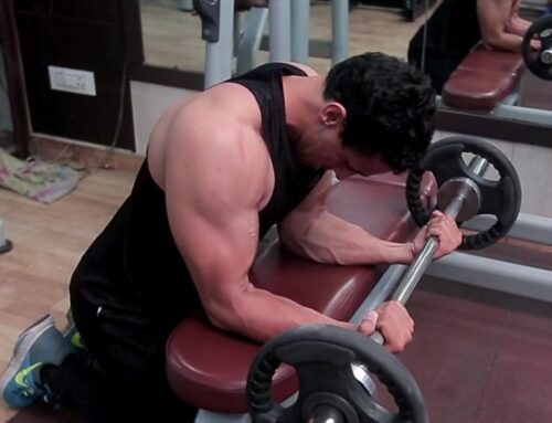Seated Palm Up Barbell Wrist Curl