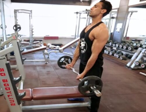 Standing Ez-Bar Biceps Curl