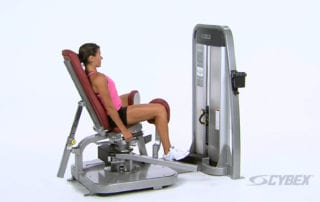 Thigh Adductor (Inner) On Machine Exercise
