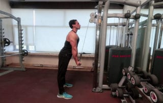 Reverse Grip Triceps Pushdown