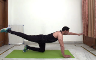 Opposite Arm and Leg Raise
