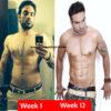 12 week body transformation results