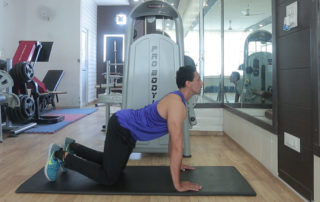 No Equipment Home Workout Plan With Back Strengthening